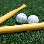 button-only@2x キャップ投げ野球のルール,バット,良い投げやすいキャップは?地味に見えて面白い!!